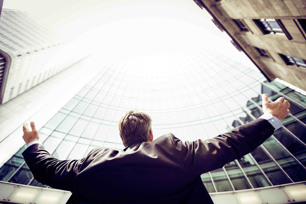 En verksamhetsarkitekt kan ha det övergripande och absolut nödvändiga perspektivet på verksamheten