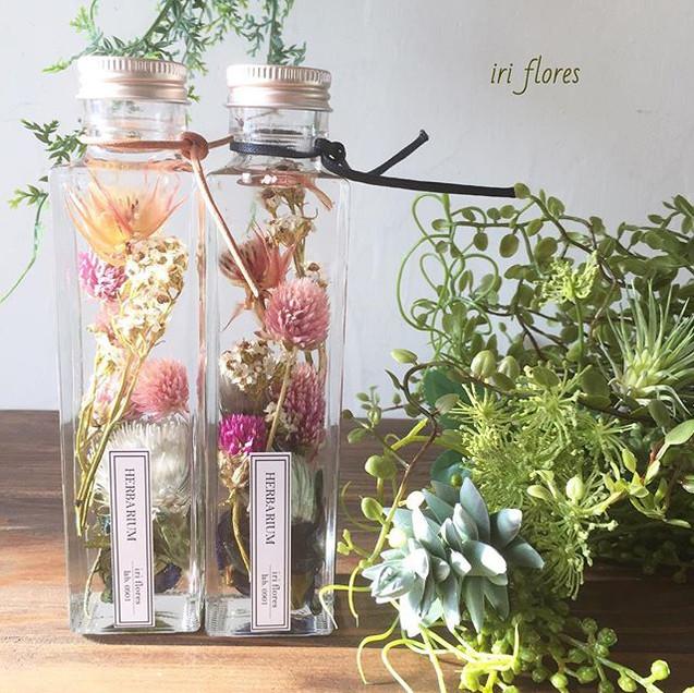 colorful herbariums.jpg