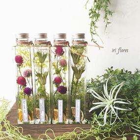 Botanical gift.jpg