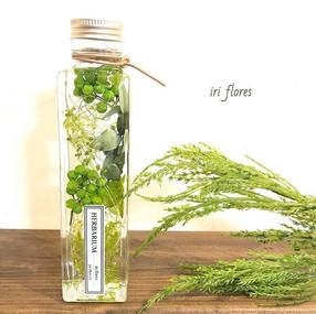 Green Herbarium.jpg