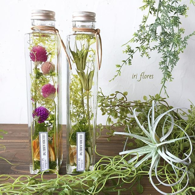 Our new design herbariums.jpg
