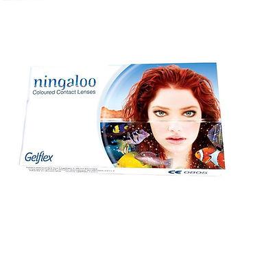 Ningaloo цветные контактные линзы на месяц