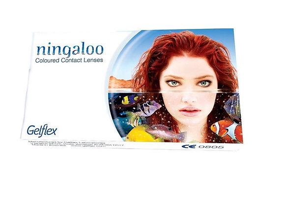 Ningaloo цветные контактные линзы на месяц, фото