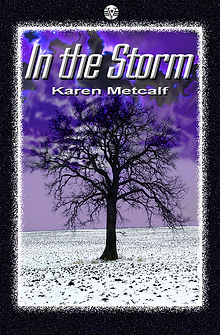 Cover of In the Storm