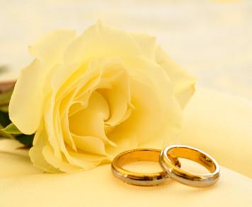 Rings+w+rose.png