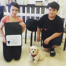 Congratulations to Apollo the Greek Doge
