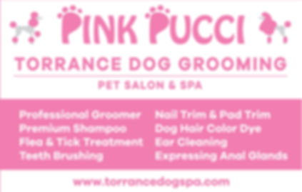 Final -Pink Pucci Window Decal OL.jpg