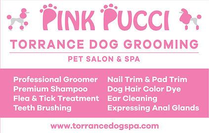 Final -Pink Pucci Window Decal OL.jpg