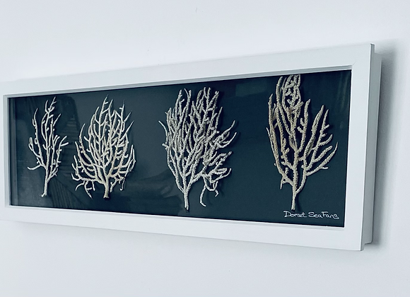 Sea Fans Artwork