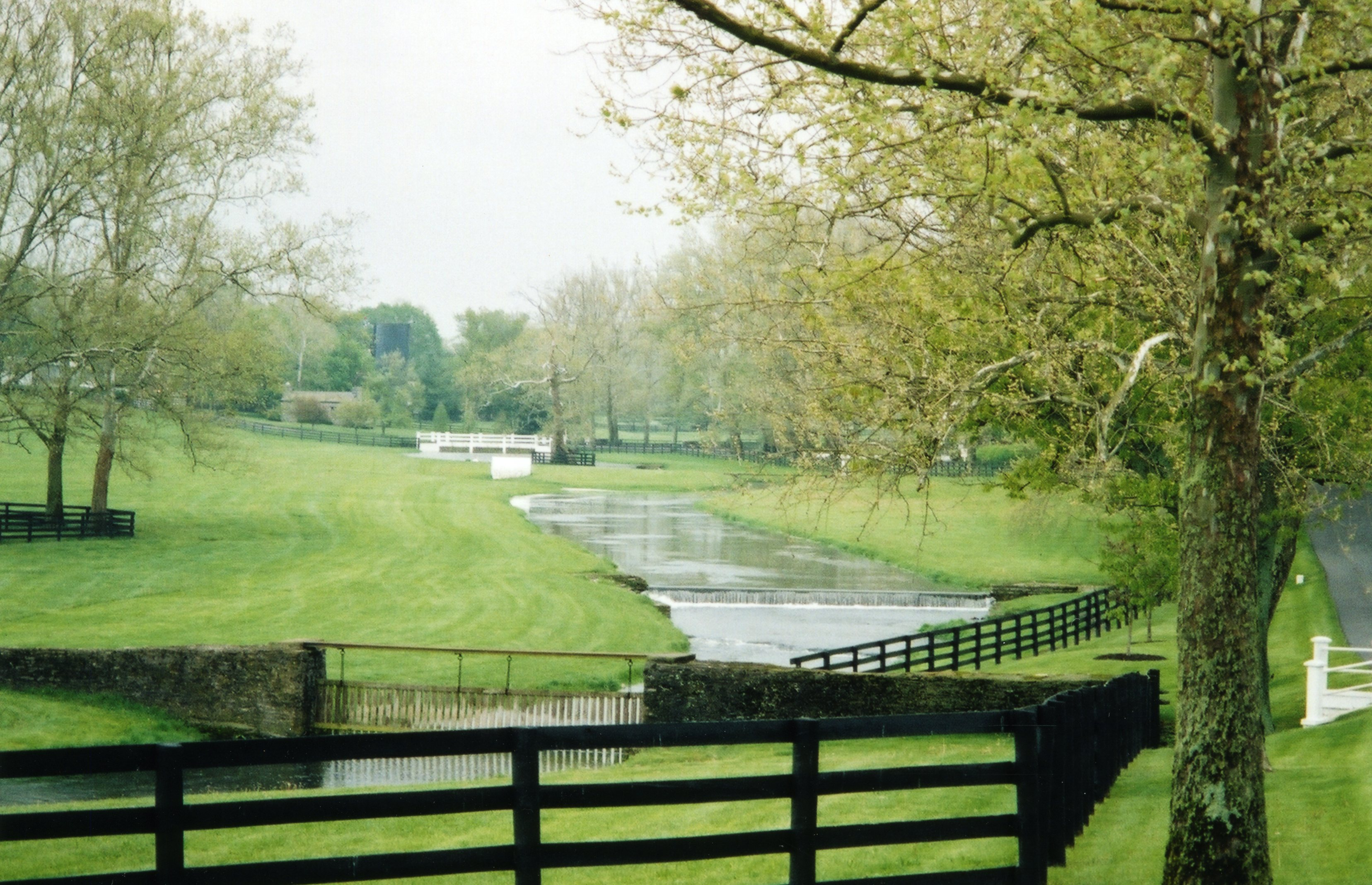 Claiborne Farm, May 2004