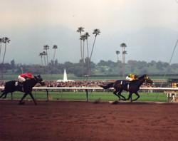 Santa Anita Derby