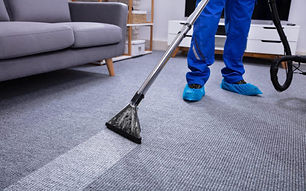 carpet just steam it clean.jpg