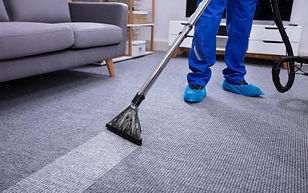 carpet just steam it clean.jpg
