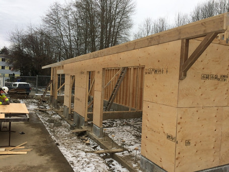 Day 18 - Plywood Sheeting