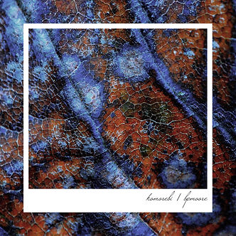 Komorebi (front cover) copy.jpg