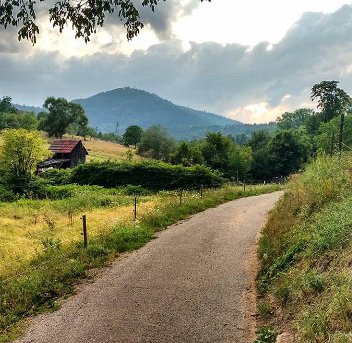 Granja orgánica Gernsbach