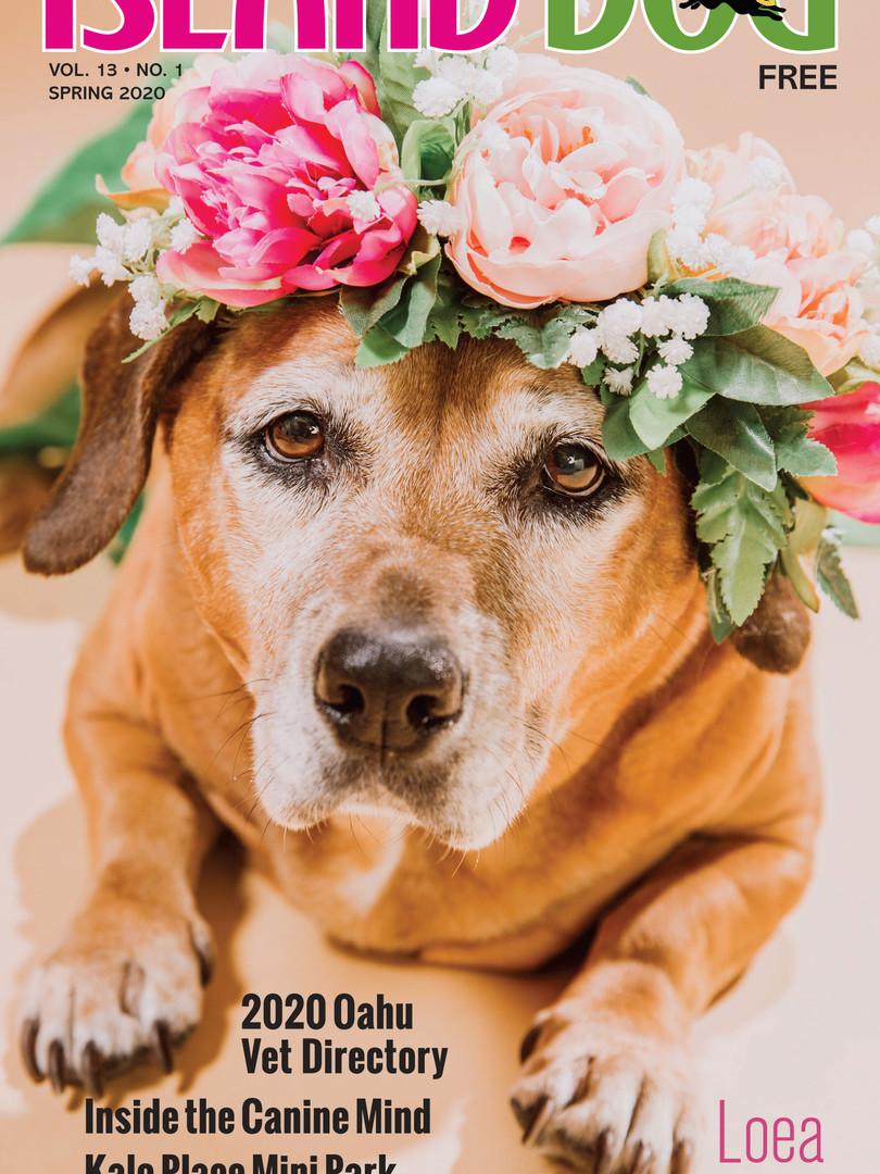 Island-Dog-Spring-2020-Loea.jpg