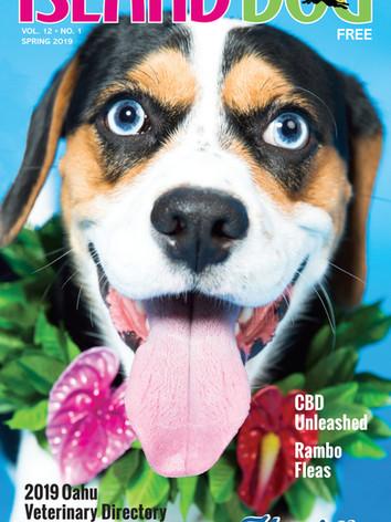 Island-Dog-Spring-2019-Henry.jpg