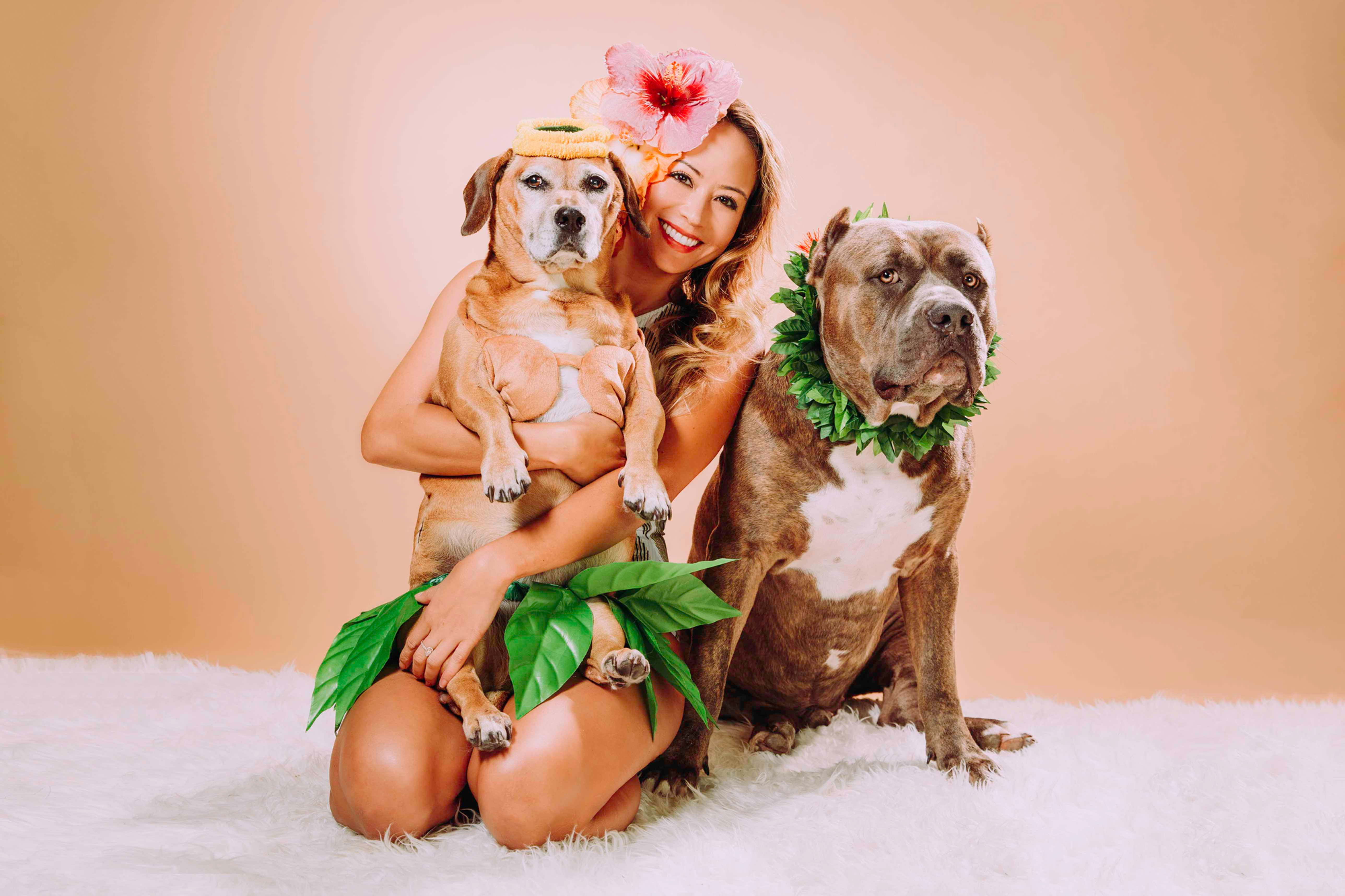 Styled Pet Photoshoots