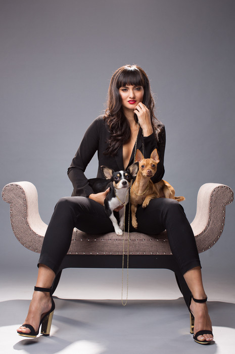 Styled Pet Shoots