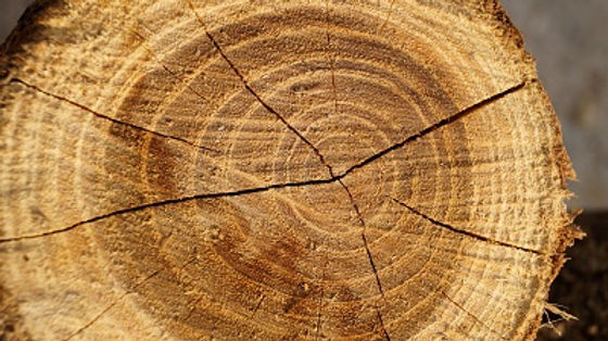 wood pattern - small.jpg