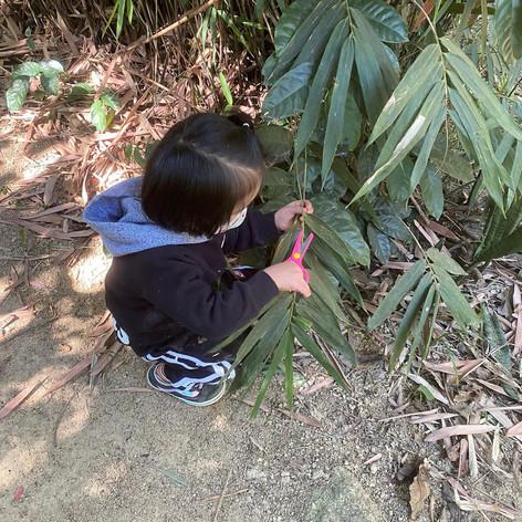 Backyard Explorers