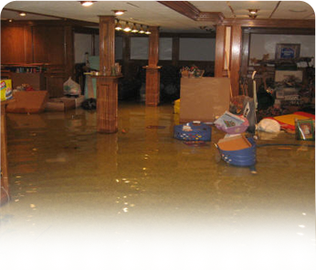 What to do when sewage backs up into your home.