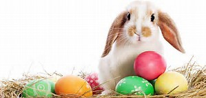 Happy Easter Weekend!