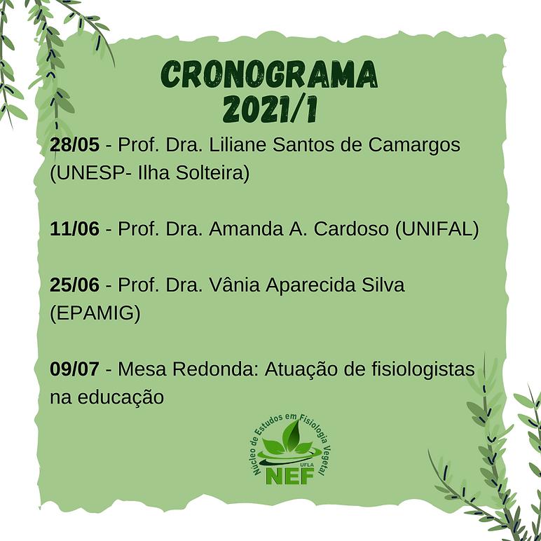 cronograma 2021-1.png