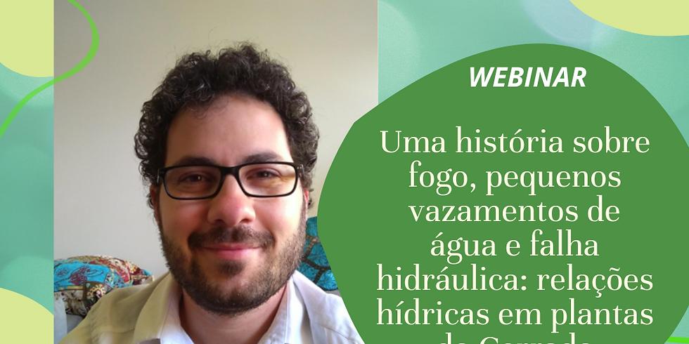 """""""Uma história sobre fogo, pequenos vazamentos de água e falha hidráulica: relações hídricas em plantas do Cerrado"""""""