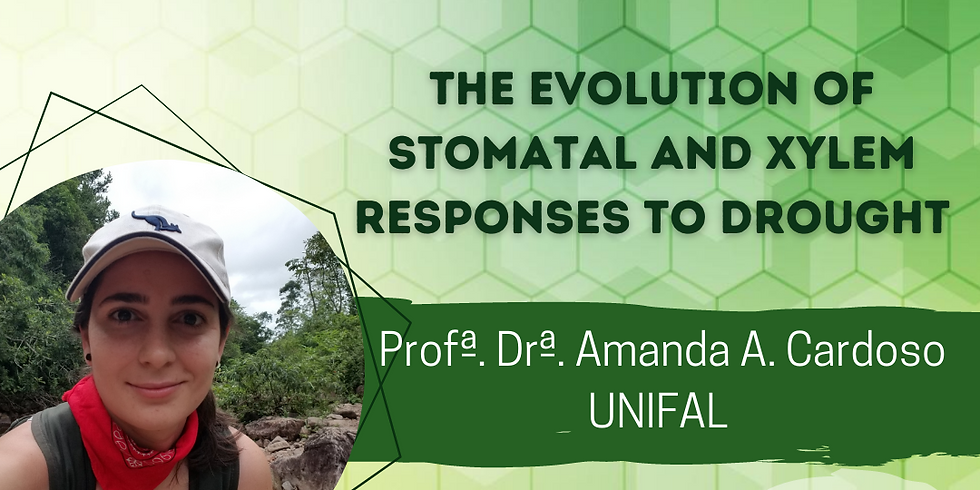 The evolution of stomatal and xylem responses to drought
