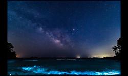 真鶴半島 番場浦海岸 2016年5月