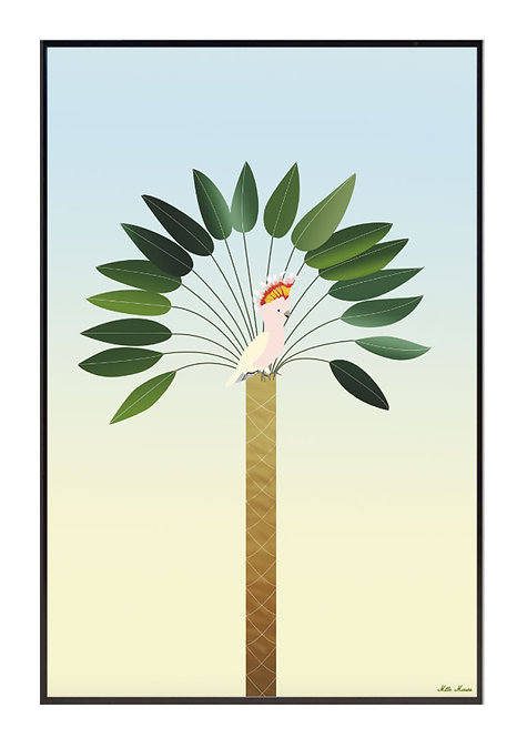 tableau, affiche, poster, parrot, palmer, palmier, perroquet