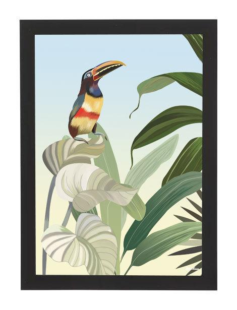 tableau, affiche, poster, toucan, jungle, vegetation