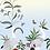 tableau, affiche, poster, oiseau, fleur, rouge , papillon, butterfly