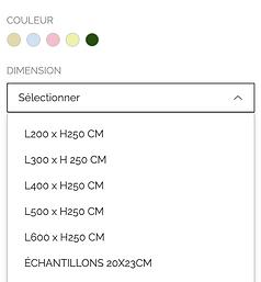 Capture d'écran 2021-01-07 à 12.53.16.