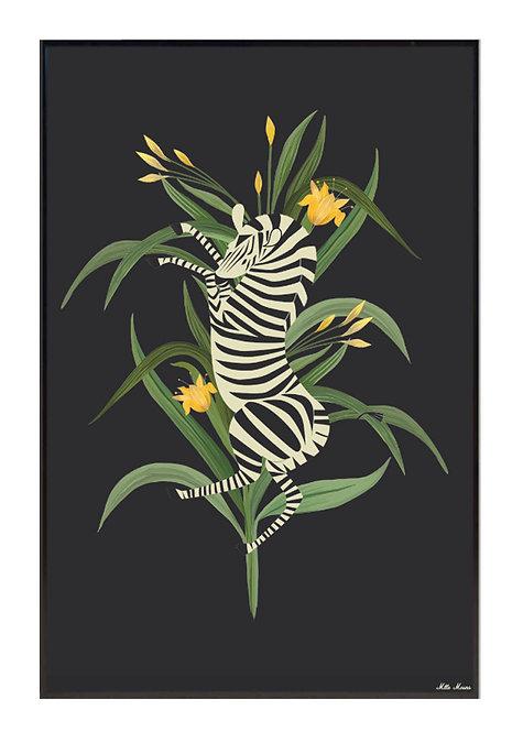 tableau, affiche, poster, zebre, zebra
