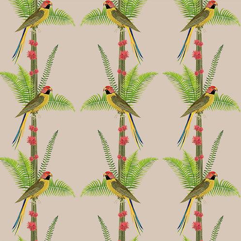 perroquet, papier peint, panoramique, parrot, wallpaper, walldecor, fresque, cactus, panoramic, decor mural