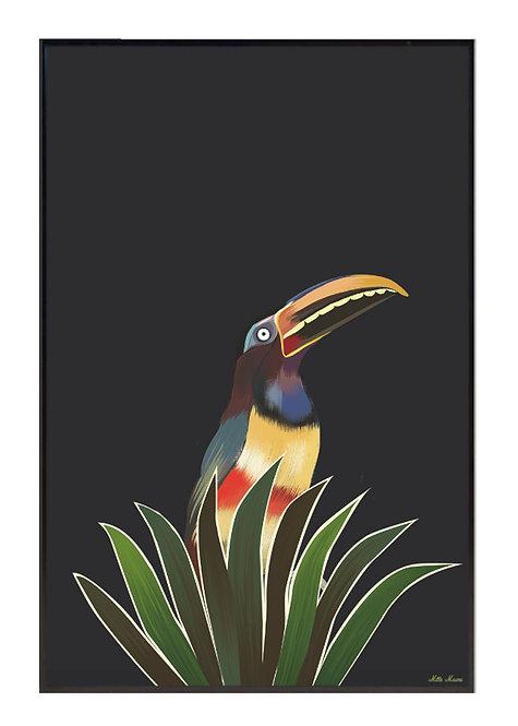 tableau, affiche, poster, toucan, palmier, palmer, vegetation