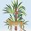 tableau, affiche, poster, leopard, cheetah, vegetation, cactus