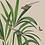 tableau, affiche, poster, vegetation, singe, palmier, palmer, parrot, perroquet