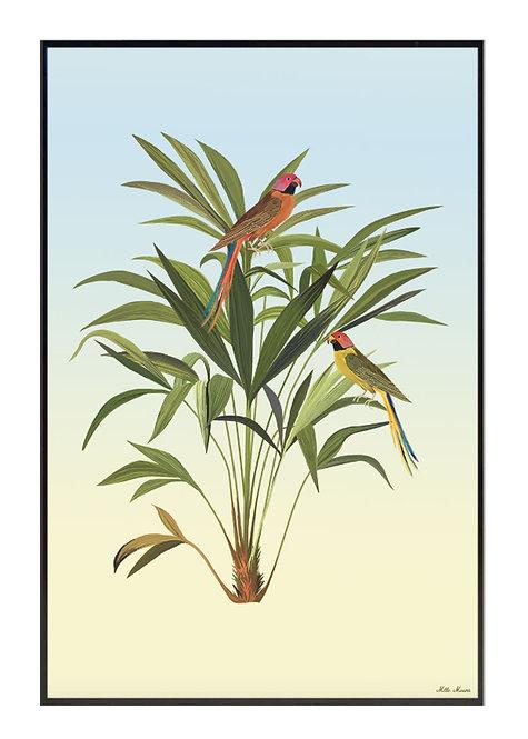 tableau, affiche, poster, parrot, perroquet, oiseau, palmer, palmier