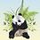 tableau, affiche, poster, oiseau, fleur, vegetation , panda, fougere