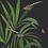 tableau, affiche, poster, oiseau, bird, vegetation, flower, fleur
