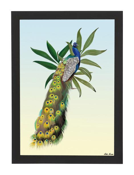 tableau, affiche, poster, paon, vegetation