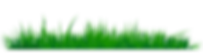 Grass-Clipart-PNG-Image-07.png