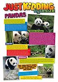 Pandas-1.png