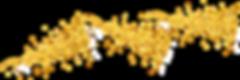 gold-confetti-transparent-png-8.png