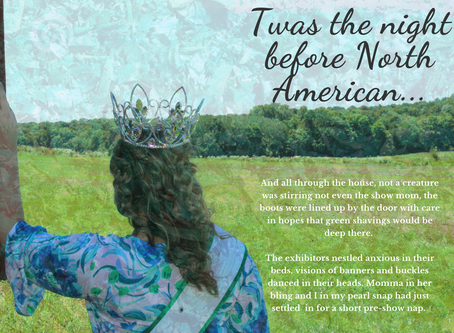 Mariah Messink - Twas' the night before North American...