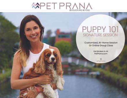 Pet Prana Postcards5.jpg